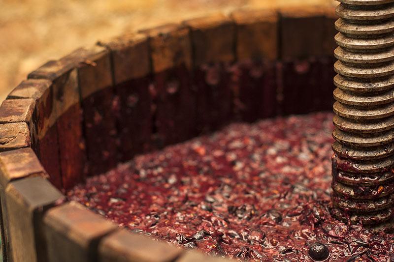 Les vins du moment, on attaque l'automne