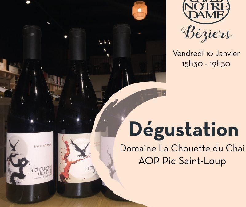 Domaine La Chouette du Chai Timelines: Dégustation de Vin Janvier 2020